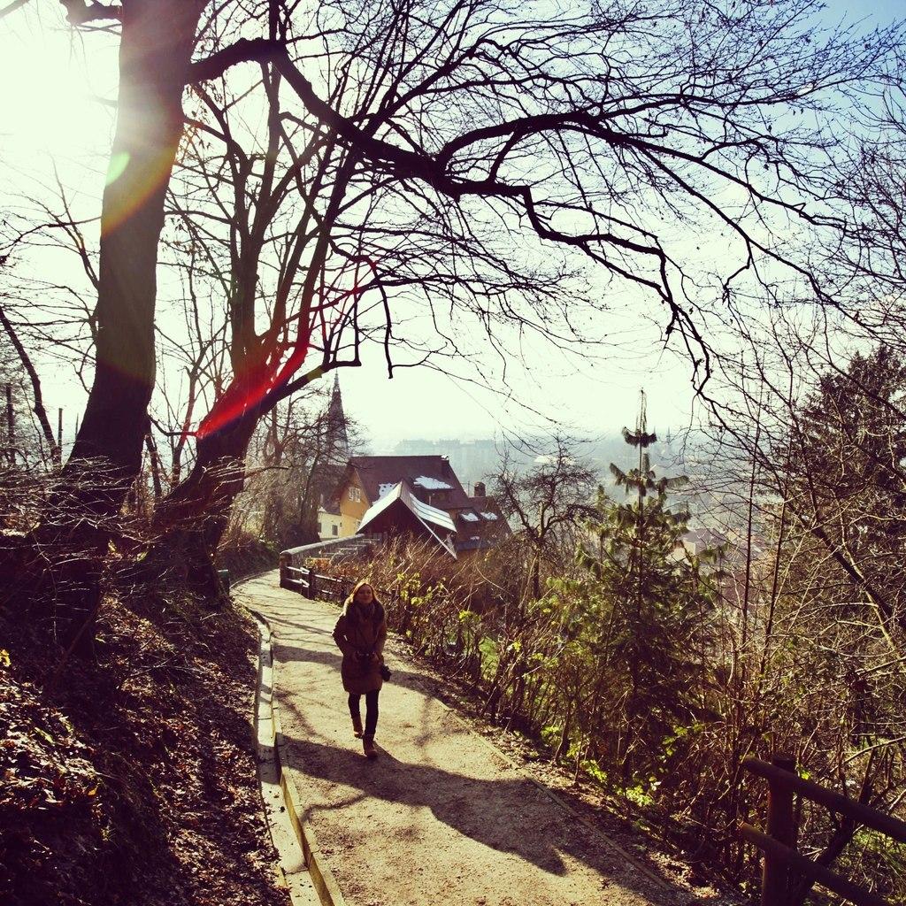 По дороге на холм