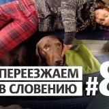 Словения переезд ВНЖ ПМЖ