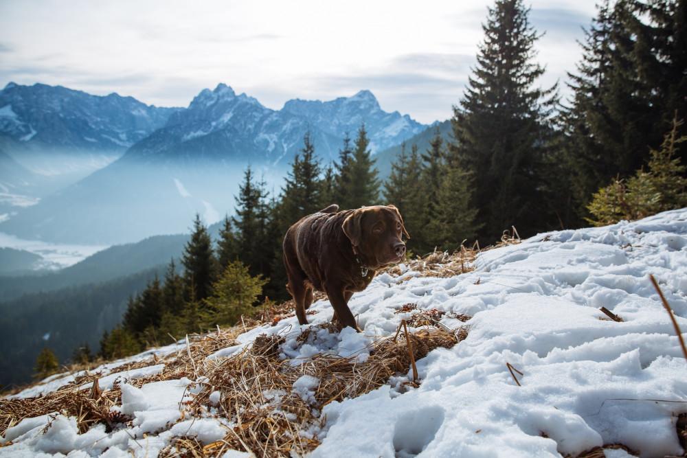Словения. Три границы