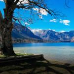 Словения Бохинь озеро
