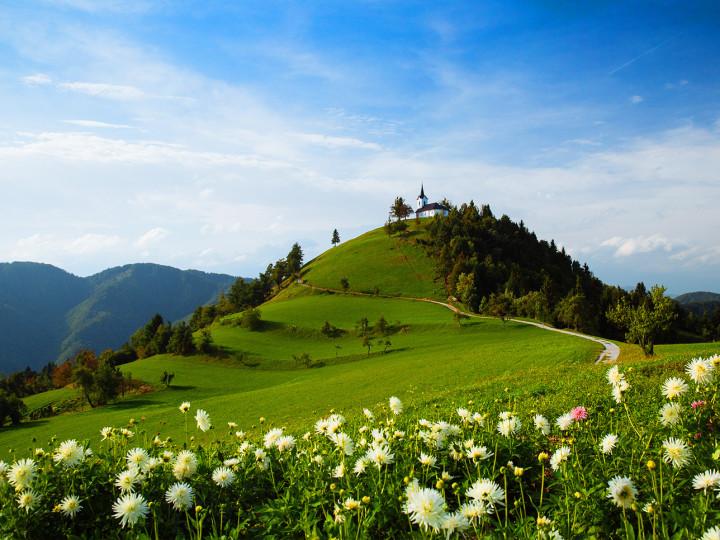 иммиграция Словения